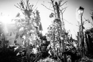 Domaine des Graves - La Bretelle à la maison !